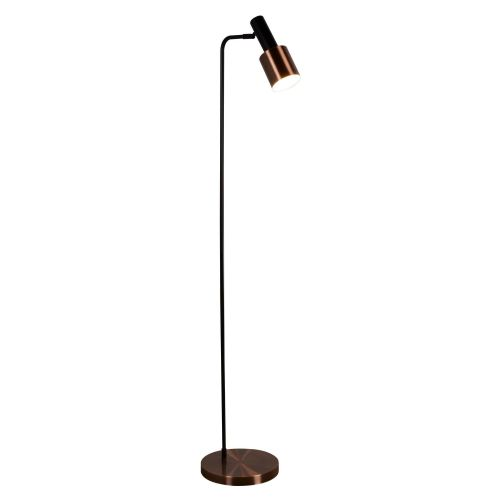 Denmark 1 Light Floor Lamp, Black, Antique Copper (Double Insulated) Bx3053Cu-17
